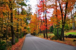 New-Hampshire-fall-foliage-540x358